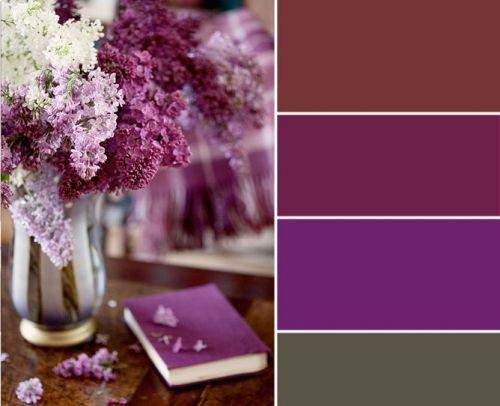 img_lemonbe_colores_140912