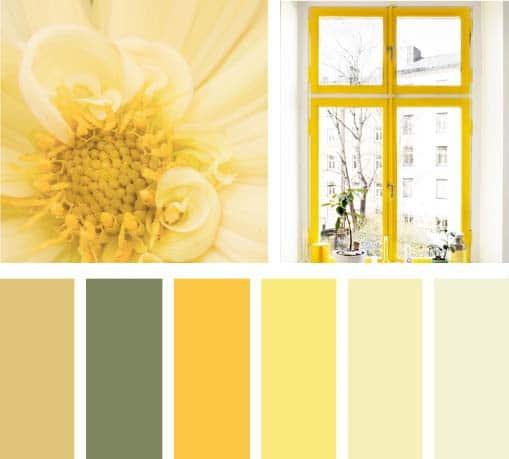 Amarillo Buenos D As Lemonbe El Color Olor Y Sabor De