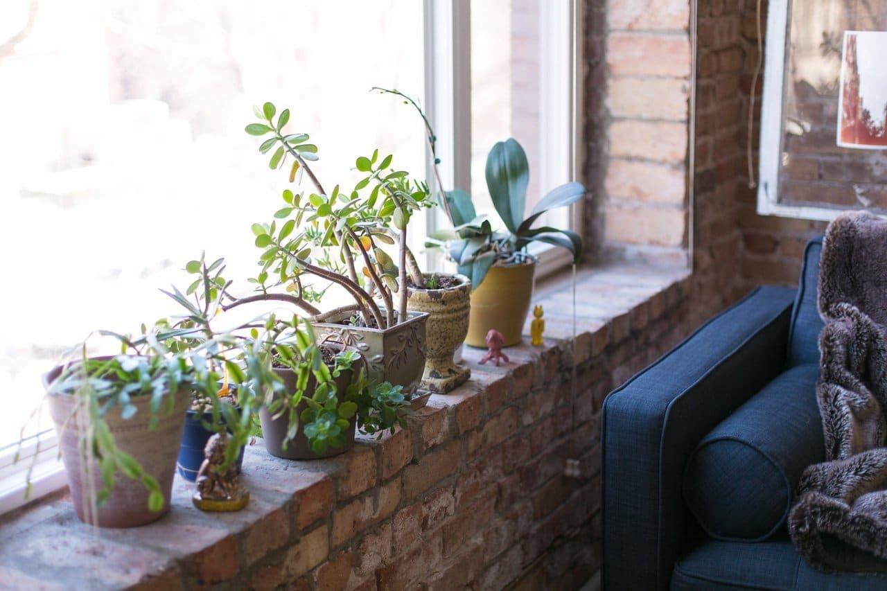 lemonbe-Vintage contemporáneo y hermoso así es este hogar en Chicago-04