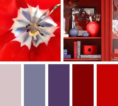 Wine perfume lemonbe el color olor y sabor de tu hogar lemonbe el color olor y sabor de - Paleta de colores pared ...