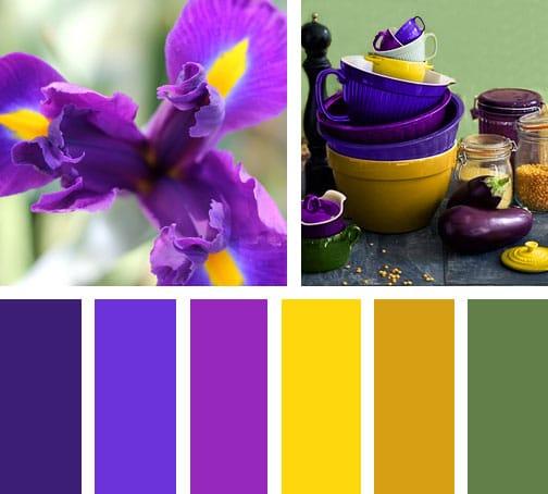Morado y amarillo lemonbe el color olor y sabor de tu hogar lemonbe el color olor y - Paleta cromatica de colores ...