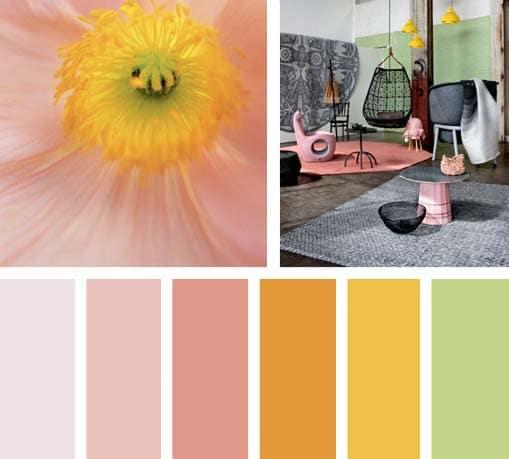 img_LEMONBE_color_flor_verde_amarillo_rosa_espacio_eclectico_OCTUBRE2013_18