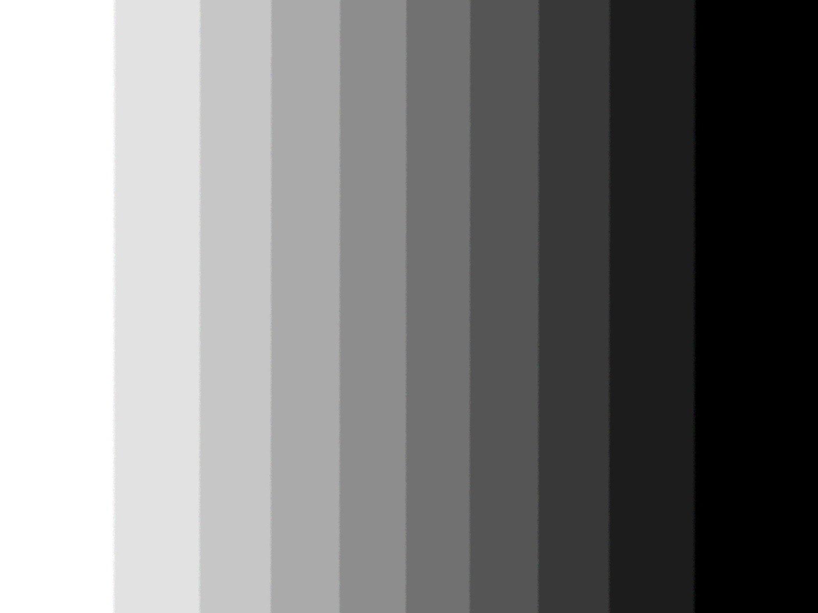 lemonbe-50 tonos de gris aplicados a la decoración de interiores-01