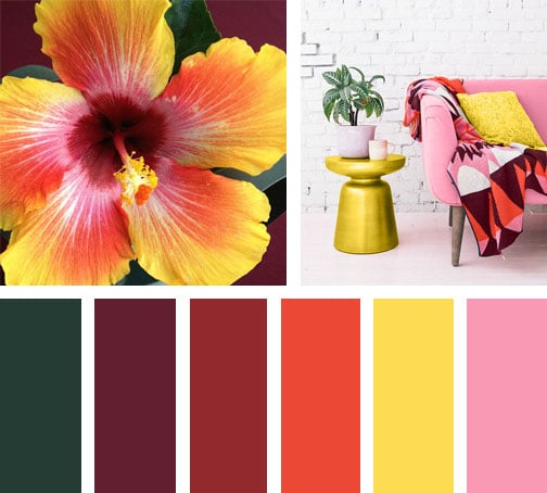 LEMONBE_Paleta de colores_Boho Bloom