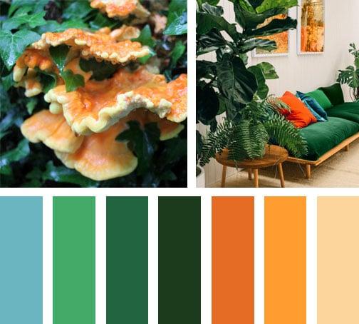 LEMONBE_Paleta de colores_wild_orange