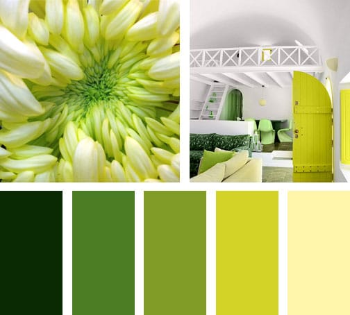 lemonbe_paleta-de-colores_new-born-green
