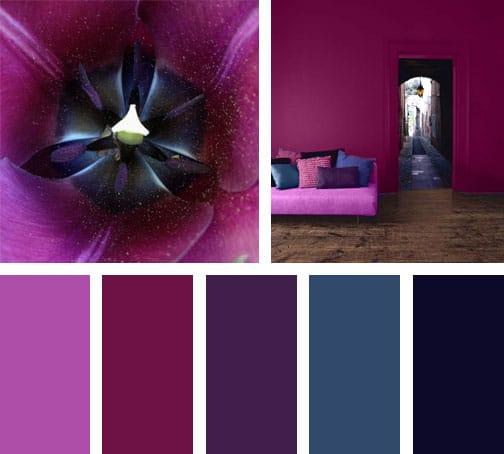 lemonbe_paleta-de-colores_reddish-blue