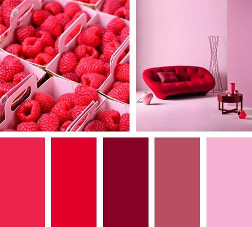 lemonbe_paleta-de-colores_sabor_frambuesa