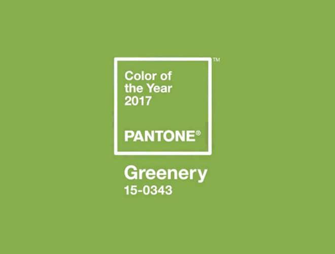 lemonbe_color-2017-greenery_01