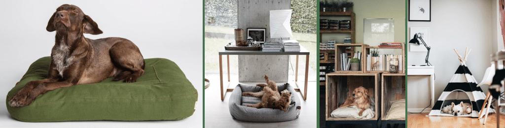 LEMONBE_Cómo tener una casa Pet Friendly_02