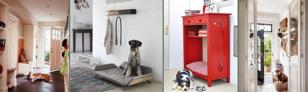 LEMONBE_Cómo tener una casa Pet Friendly_05