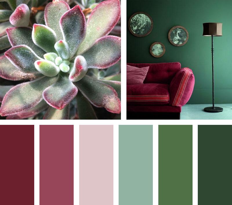 img_LEMONBE_Paleta de color_wisdom