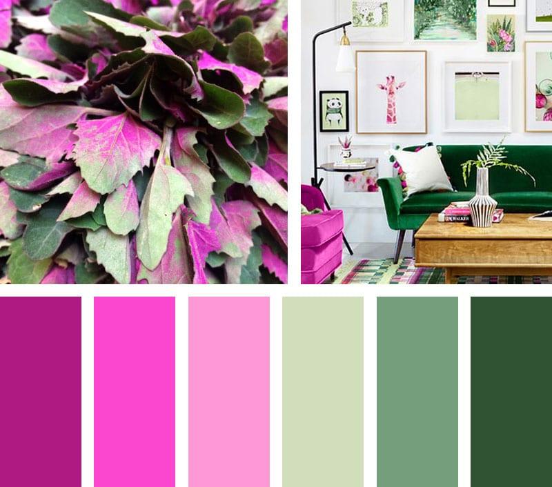 img_LEMONBE_Paleta de color_verde fucsia